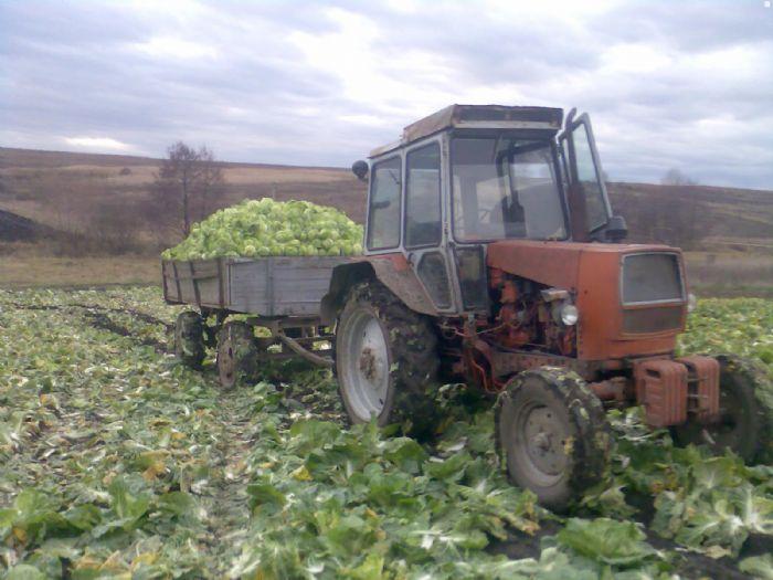 Трактор Карпатец цена, фото, где купить Черновцы